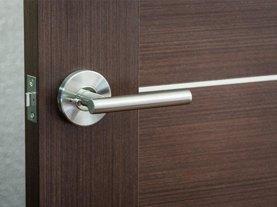 Modernus Door Lever Installed