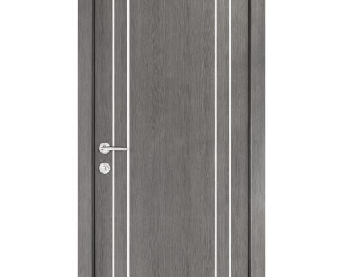 Smart 010 Gray Wood Eco Veneer Interior Door