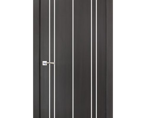 Smart 011 Wenge Wood Eco Veneer Interior Door